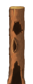 trunk_preview.png