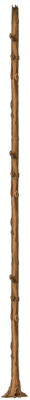 Stump skinny 3.png