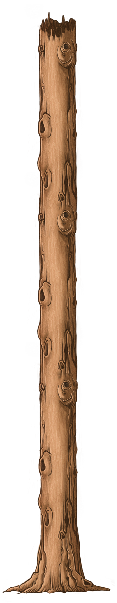 Trunk 3.png