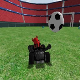 soccer_field_screenshot.jpg